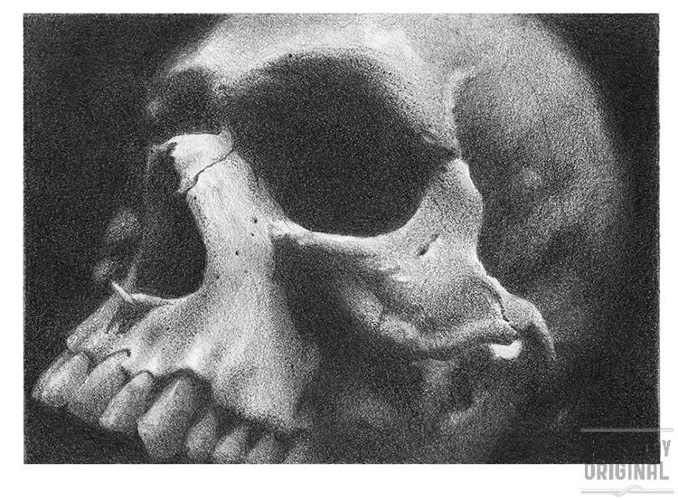 Skull Study #2