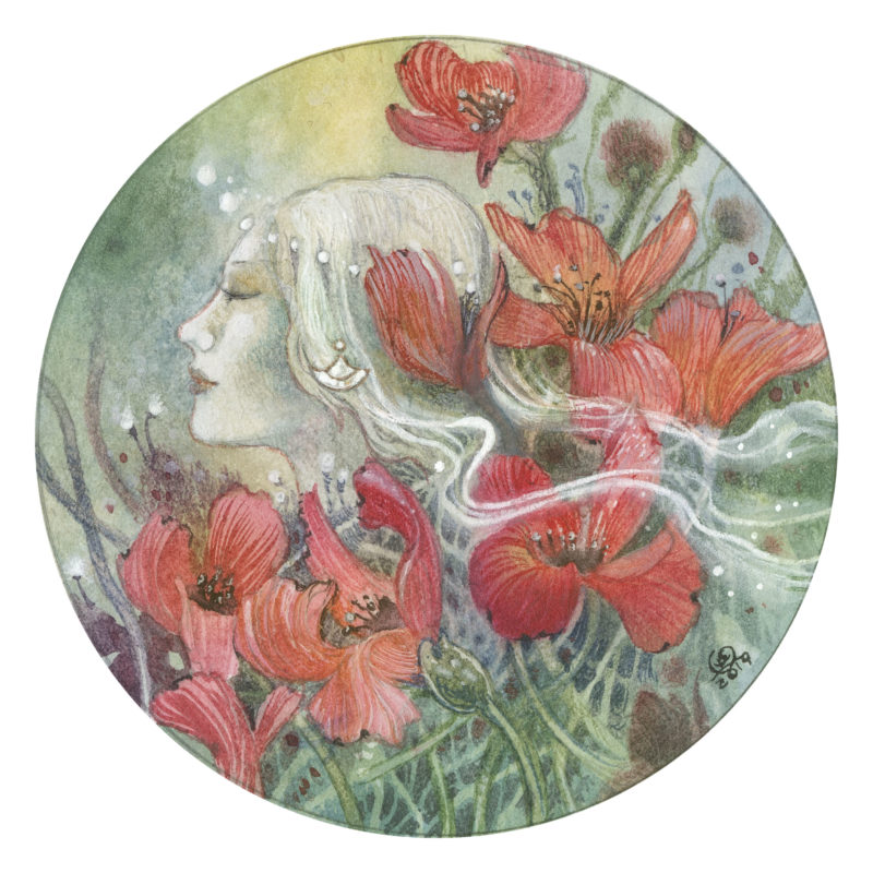Summer's Dream by Stephanie Law