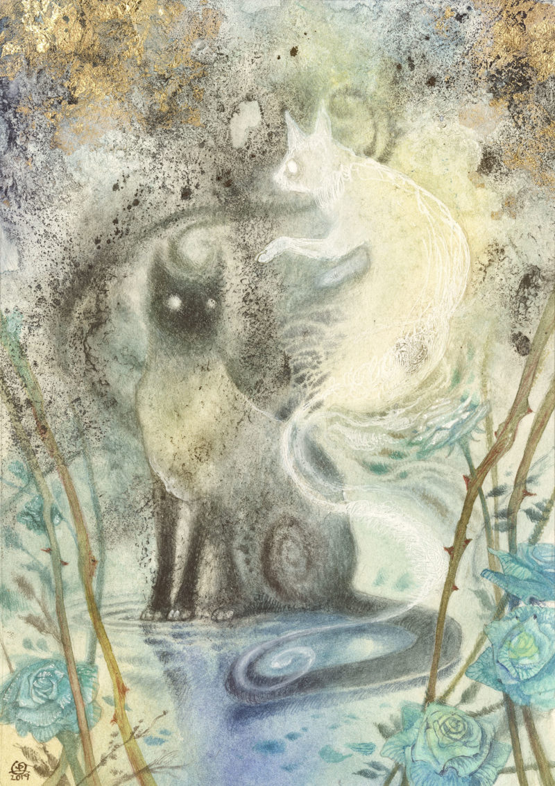 Playing with Shadows by Stephanie Law