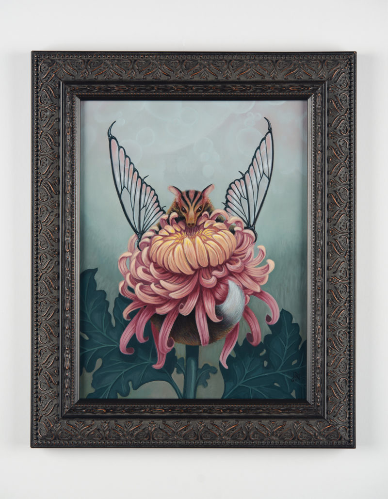 """Glass-Wing Blossom Bat"" - by David Natale"