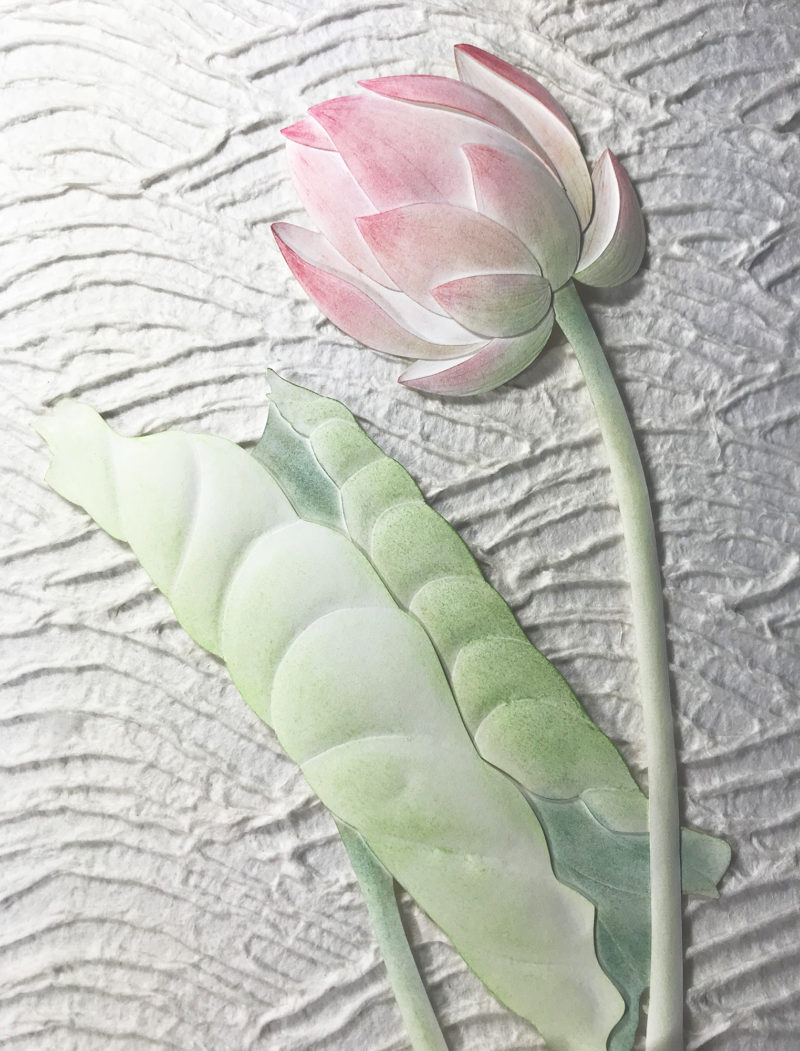 Lotus Bud Detail