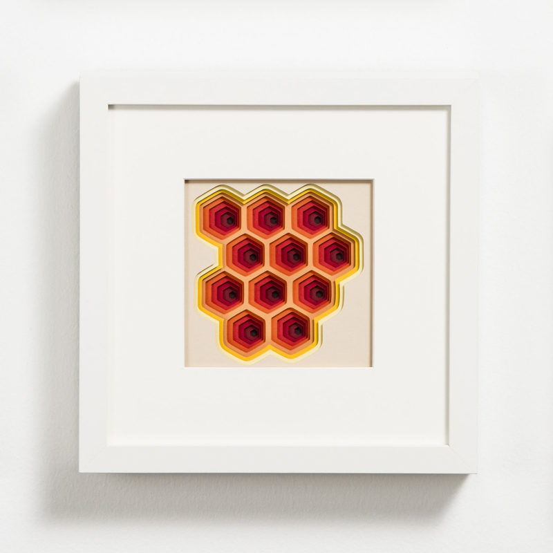 Daria Aksenova - Spring Rose - Shadowbox