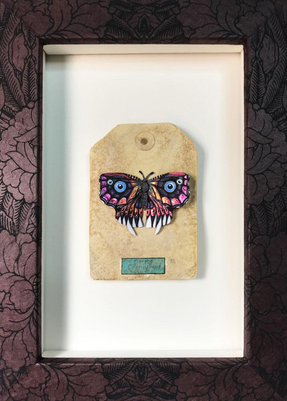 Skull Butterfly Framed