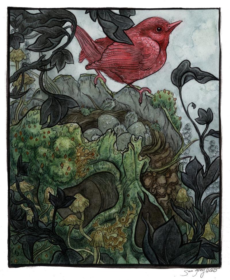 """""""Songbird & Skull"""" - by Sam Guay"""