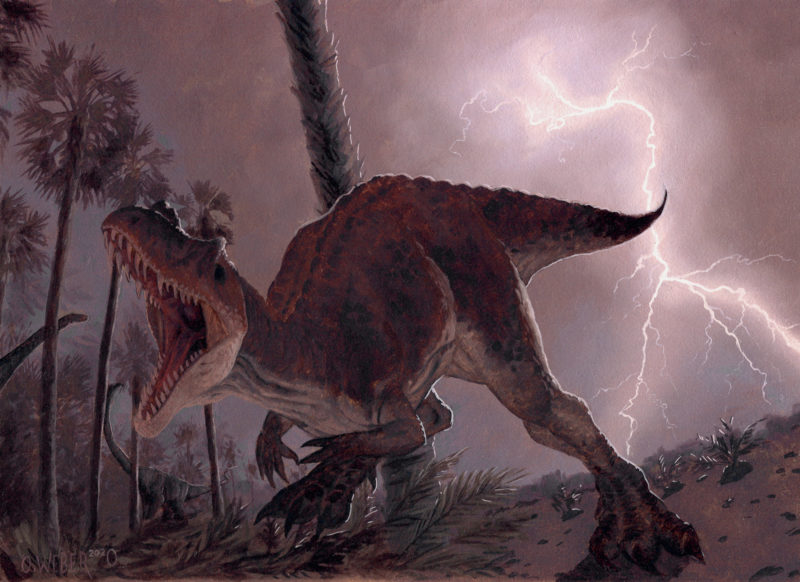 Ceratosaurus by Owen William Weber