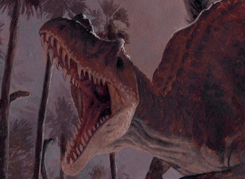 Detail of Ceratosaurus by Owen William Weber