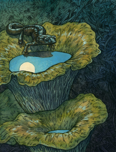 """Night Rambler"" by Emily Poole"