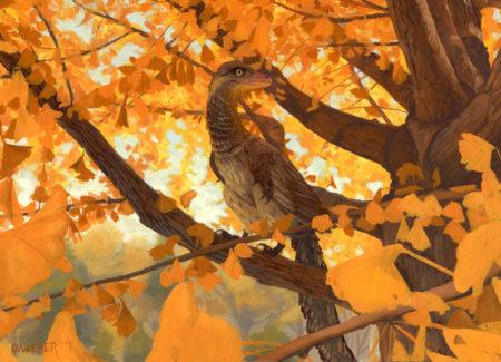 Archaeopteryx by Owen William Weber