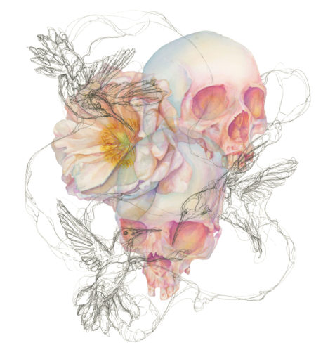 Watercolor painting of skulls and flowers with ink hummingbirds.