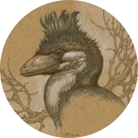 """Crested Deinonychus"" by Natee Puttapipat"