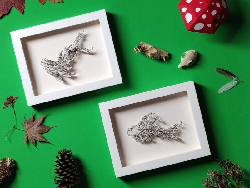 Baby Shark Study by Daria Aksenova. Hand-cut illustration of a baby shark suspended in a shadowbox structure.