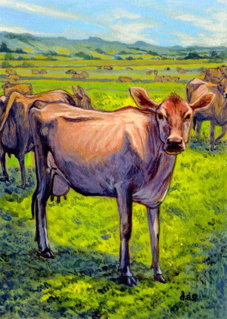 """Jersey Cows"" -- by Danny Schwartz"