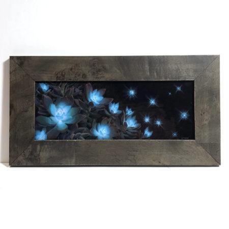 emphyrean framed